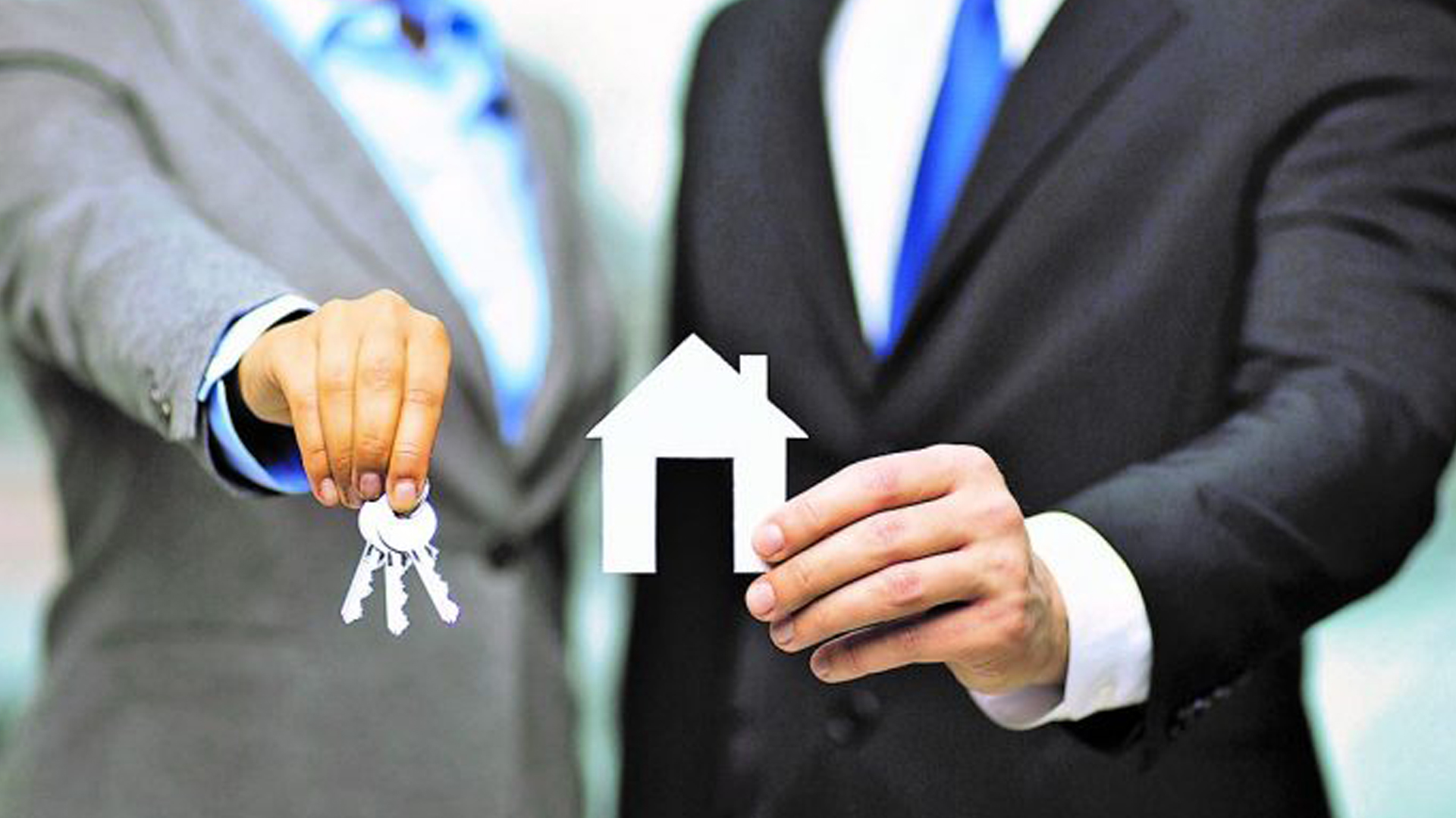 Property Services Provider
